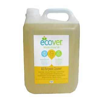 Multi-use cleaner 5 L of 1L