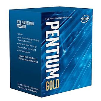Processeur Intel Pentium Gold G6500 Dual Core 4,1 GHz 1200 Comet Lake Socket avec ventilateur dissipateur de chaleur