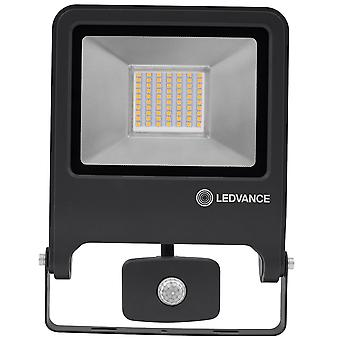 Ledvance LV206786 Floodlight 50W 400K (Coolwhite) Sensor Dark Grey
