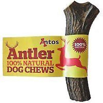 Antos Antler natuurlijke hond Chew (grootte: Medium) 75-150g