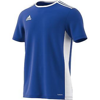 Adidas Entrada 18 CF1037 training all year men t-shirt