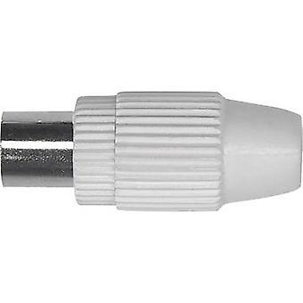 Koax IEC Kupplung Kabel-Durchmesser: 6,8 mm