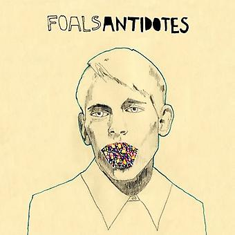 Foals - Antidotes [CD] USA import