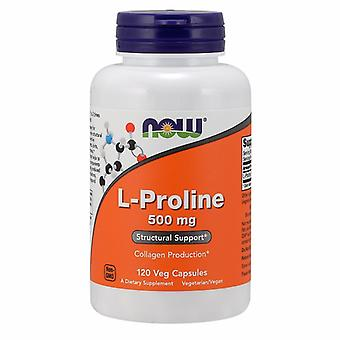 Now Foods L-Proline, 500 mg, 120 Vcap