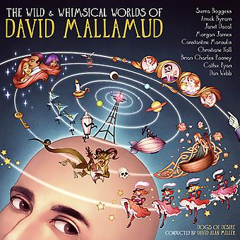 Various Artist - Wild & Whimsical Worlds of David Mallamud [CD] USA import