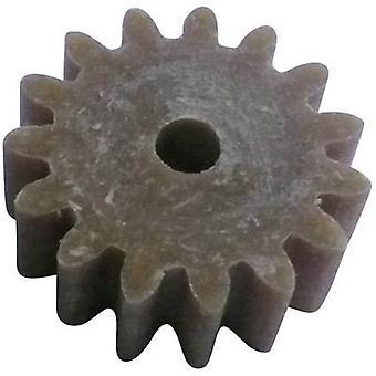 Reely trä, plast kugghjul modultyp: 1.0 No. tänder: 15 1 dator