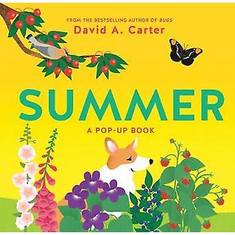 الصيف-كتاب منبثق من قبل ديفيد كارتر-كتاب 9781419728327