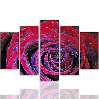 Five Part Picture On Canvas, Pentaptych, Type A, Dewy Rose