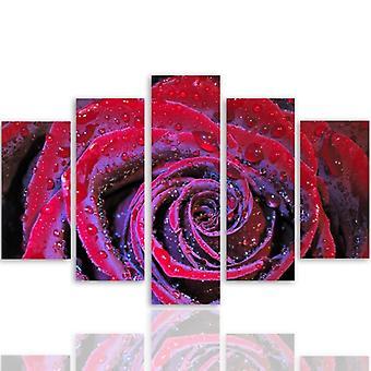 Cinco partes de imagen en lienzo, Pentaptych, tipo A, Dewy Rose