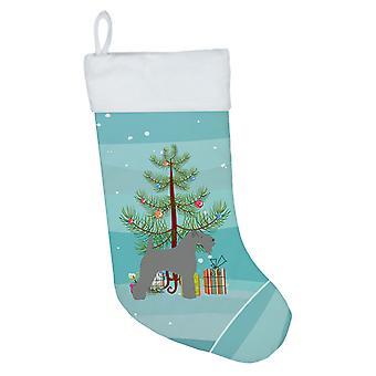 Kerry Blue terrieri hyvää joulua puu joulu sukat