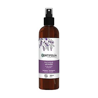 Lavender Floral Water 200 ml of floral water