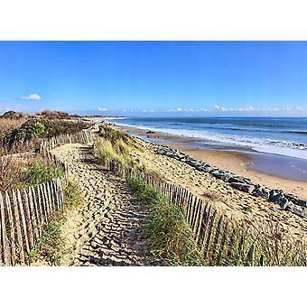 Tapeter väggmålning sanddyner i Atlanten