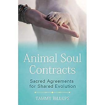 Animal Soul Contracten: Heilige overeenkomsten voor gedeelde evolutie