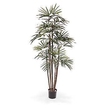 Sztuczne raphis sztuczne palmy Promo 170 cm