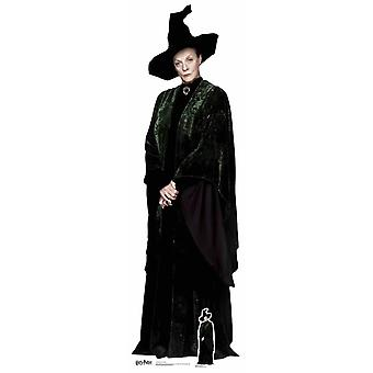 Professor Anderling uit Harry Potter Lifesize karton gestanst / Standee