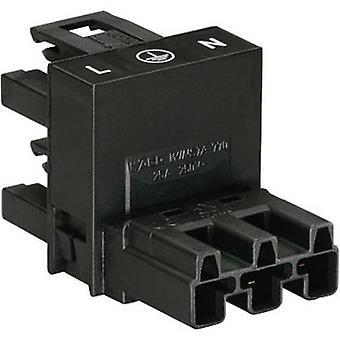 WAGO Netz H Verteiler Netzstecker - Netzsteckdose, Netzsteckdose Gesamtanzahl der Pins: 2 + PE Schwarz 1 Stk.