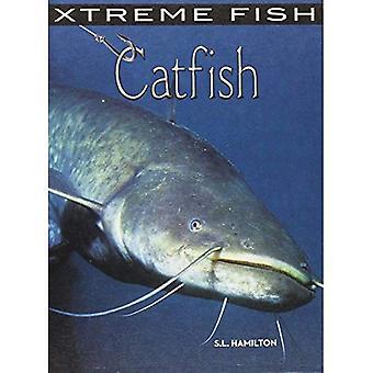 Silure (poisson Xtreme)