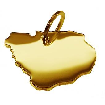 Hänge karta kedja hänge i guldgult-guld i form av URUGUAY