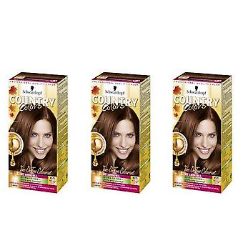 Schwarzkopf 3 X Country Colors Hair Color - Highlands / Chestnut 65