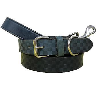 Bradley crompton véritable cuir correspondant collier de chien paire et ensemble de plomb bcdc13skyblue