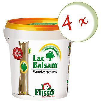 Sparset: 4 × FRUNOL DELICIA® Etisso® إغلاق الجرح LacBalm، 1 كجم