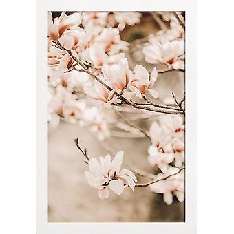 JUNIQE Print -  Magnolias 1 - Blumen Poster in Braun & Cremeweiß