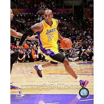 Kobe Bryant 2013-14 Action Sports Photo (8 x 10)