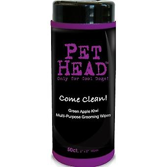 Pet Head Come Clean (Toallitas Multifuncion) 50Uni
