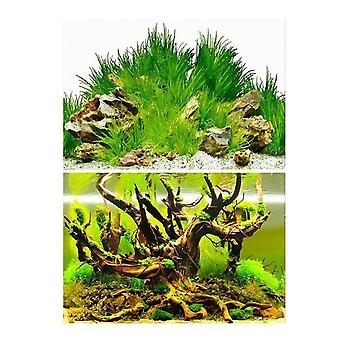 3d Background, Double-sided Landscape Sticker For Aquarium