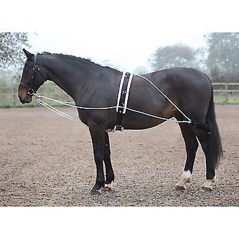 Ajuda de pulmão de cavalo de Shires