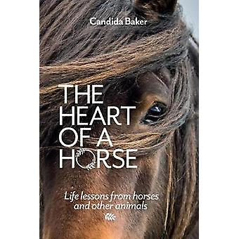 The Heart of a Horse Life lessons from horses and other animals