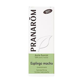 HE Organic Asp Lavender (Lavandula spica) 10 ml of essential oil