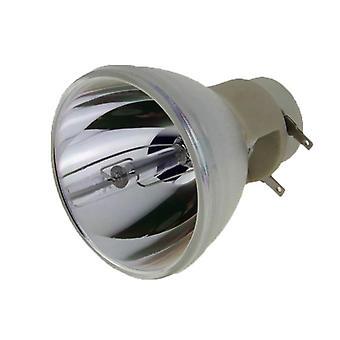 Rlc-109 Yhteensopiva vaihtoprojektorilamppu/-polttimo Viewsonicille
