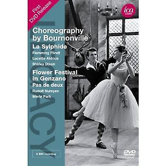 Choreography by Bournonville [DVD] USA import