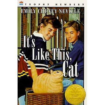 Esso & s come questo, gatto