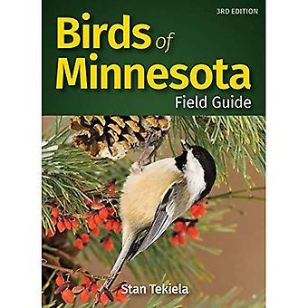 Birds of Minnesota Field Guide (Bird Identification Guides)