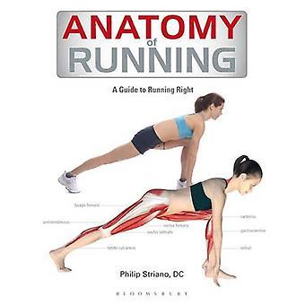 Anatomy of Running - 9781408187708 Book