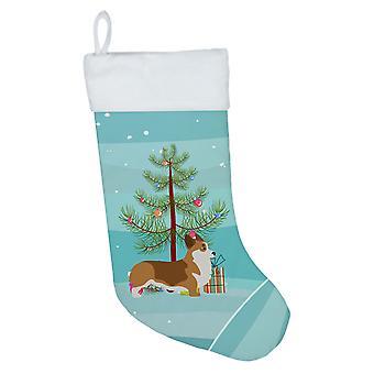 Carolines Treasures BB2938CS Corgi hyvää joulua puu joulu sukat
