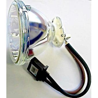 Lampada per proiettore di sostituzione potenza Premium con lampadina Phoenix per Ushio SHP87