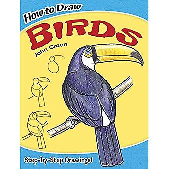 How to Draw Birds (Dover How to Draw)