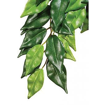EXO Terra terrarium selyem FISCUS növény