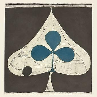 Grizzly Bear - Shields [CD] USA import