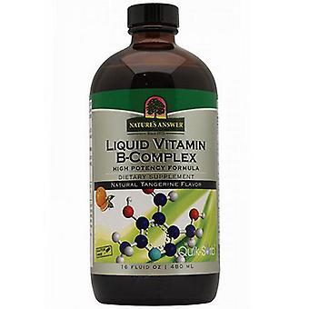 Luonto's Vastaus Nestemäinen B-vitamiinikompleksi, Luonnollinen mandariinin maku, 16 Oz