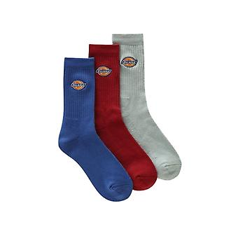 Dickies Chaussettes Valley Grove Blanc