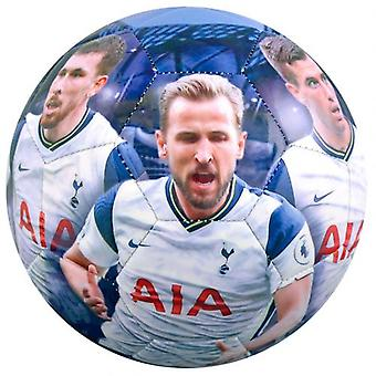 Tottenham Hotspur Jugadores Foto Fútbol