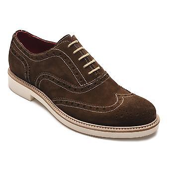 Jargo Suede cuir Brogue lacets chaussures brun foncé Alexander masculine