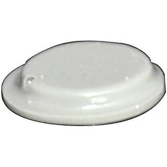 TOOLCRAFT PD2120G picior autoadezive, circular gri (Ø x H) 10,1 mm x 1,8 mm 1 buc (e)