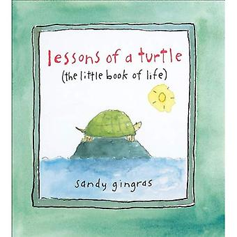 Leçons d'une tortue: le petit livre de la vie