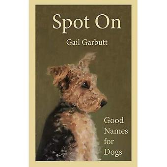 Spot an: Gute Namen für Hunde
