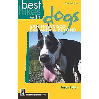 Les meilleures randonnées avec chiens San Francisco Bay Area & au-delà